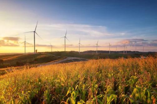 2019-08-13 14_04_24-Green Energy Images, Stock Photos & Vectors _ Shutterstock